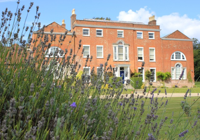 cbt-therapy-basingstoke-hampshire